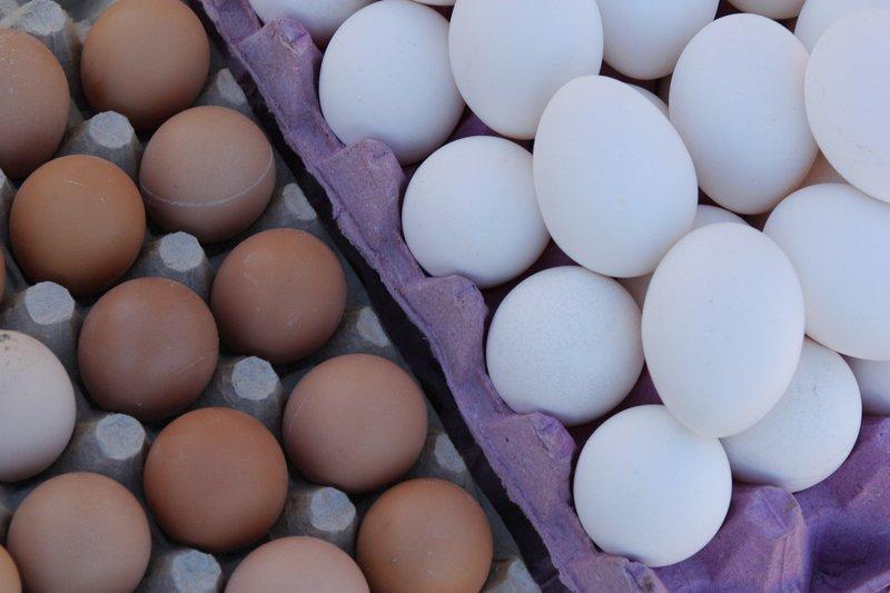 flow_software_independent_egg_producers_cs