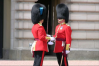changing of the guard microsoft NZ
