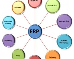 ERP experience