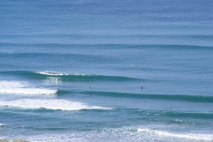 NZ Coastlines