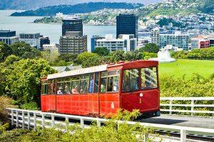 Wellington city council