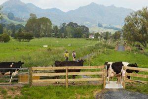 On-farm automation_MYOB