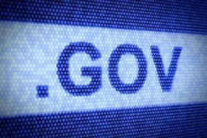 NZ want access govt online