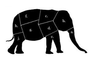 NOW_Agile_data_warehouse_eat_elephant
