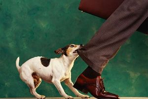 Workday ERP nips at SAP Oracle heels