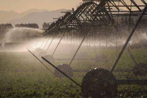 Kowhai farm agritech IoT trials