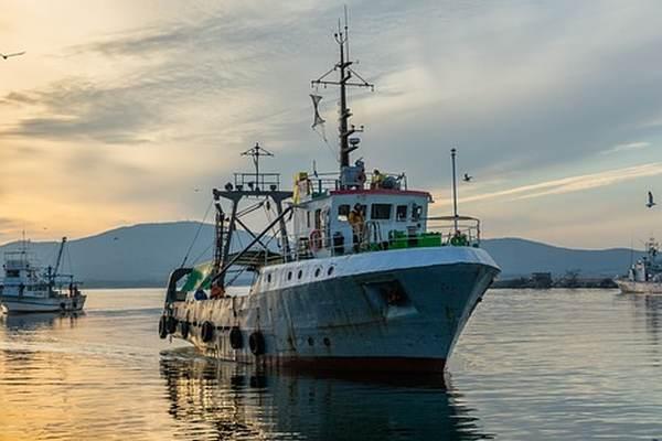 Fisheries NZ_fish monitoring