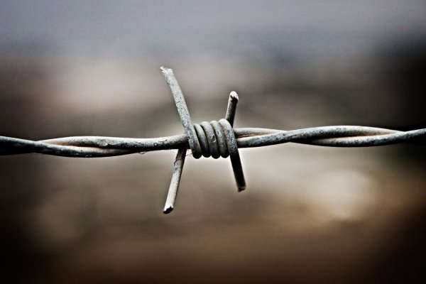NZ Tech and Productivity report_barbed wire