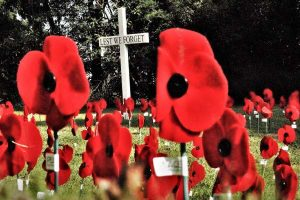 Anzac Day virtual poppies