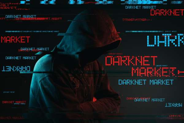 Study shows how much data is worth on the dark web