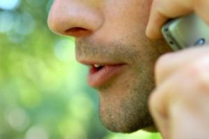 Verint voice biometrics