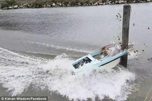 Mariner insurance