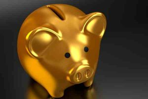 investment kiwi tech companies_TIN- report