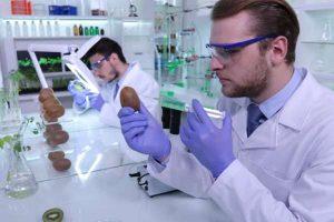 Research_Development tax scheme